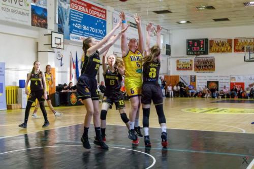 Majstrovstvá SR v basketbale